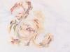 9-detail-panel-3-curly-seaweed